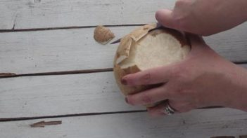 cutting notches in a whole jicama in order to peel the skin off