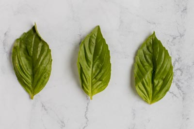 three basil leaves
